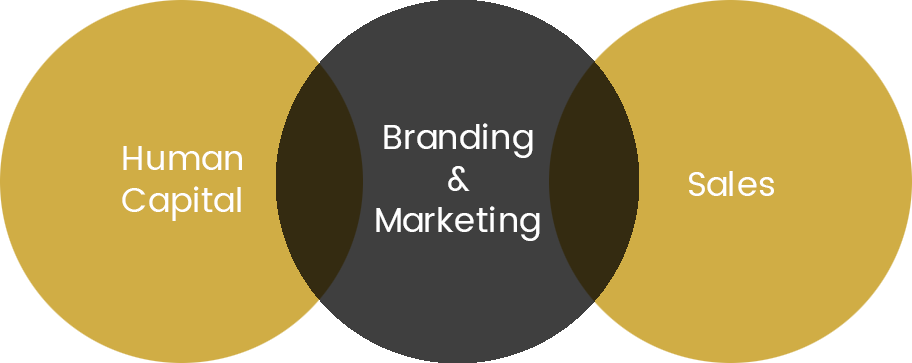 branding and marketing consultancy